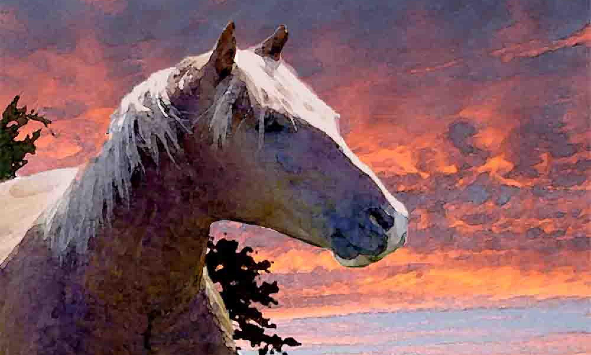 Present Moment Horsemanship